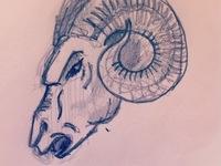 Ram Sketch for Wine Label