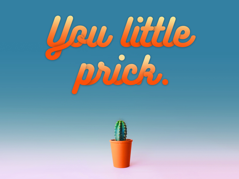 You little prick. script gradiant cactus puns scale typography minimal design colorful