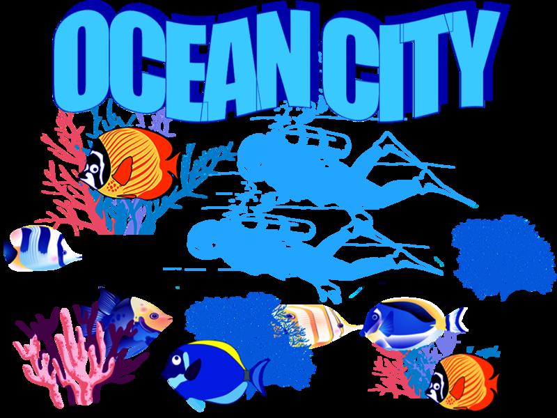 Ocean city aquarium fish beach water ocean