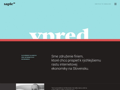 WIP of web + indentity for Slovak Alliance for Internet economy landingpage page webdesign simple typography minimal dark