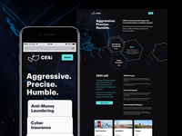 Quick landing page for CEAI