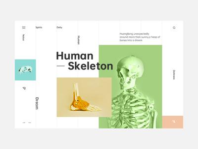 The skeleton format website web typography type ui design