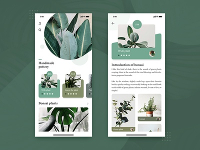 Plant app ux typography type ui design
