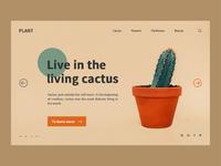 Cactus format 3
