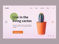 Cactus format 4
