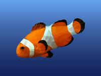 Low poly Clownfish