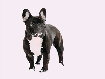 Low Poly French Bulldog