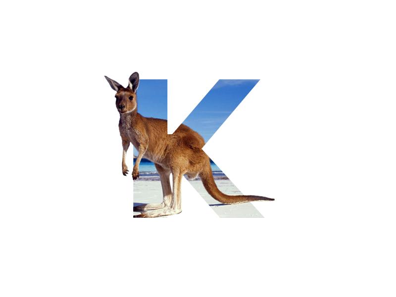 """K"" Letter Portrait photo manipulation artwork nature animal kangaroo image photo photoshop art art digital art photoshopcc photoshop inspiration minimal graphic creative graphic  design design"