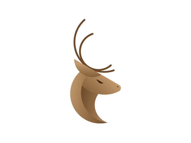 Wildlife inspiration trending branding icon logo identity wildlife wild