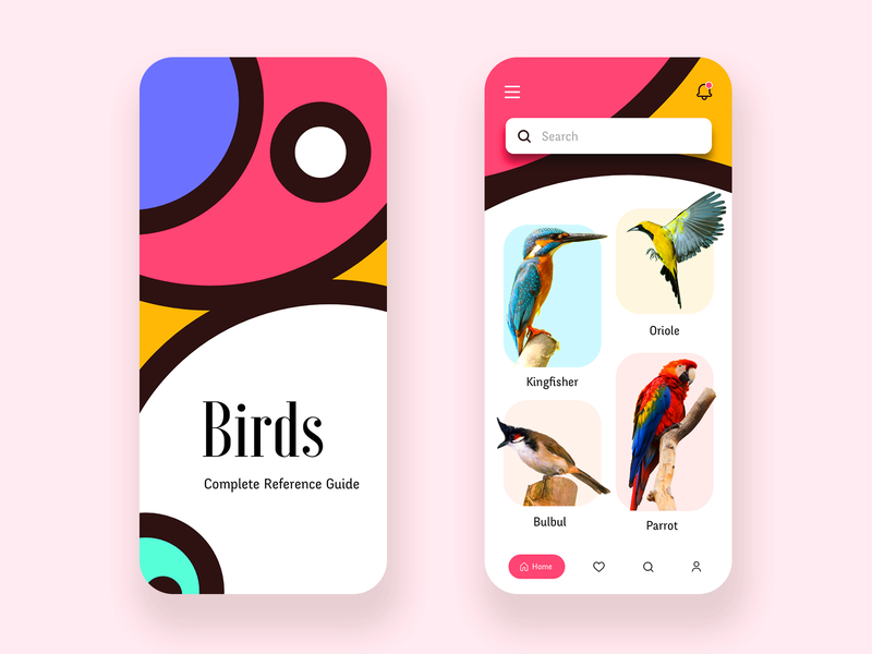 Day 25 of 100 - Birds Reference Guide App colorful pattern appdesign interface design app birds pet app bird watching bird
