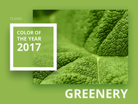 The PANTONE Color of the Year 2017