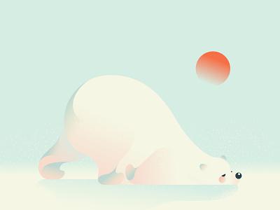 Bear vector bear vector art illustrator illustration