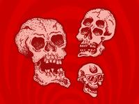 Some skulls