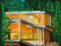 modern house in the forest