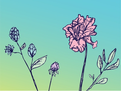 Flora weeklywarmup sunshine sky spring sketch nature handdrawn wild gradient flowers flora dribbbleweeklywarmup illustration