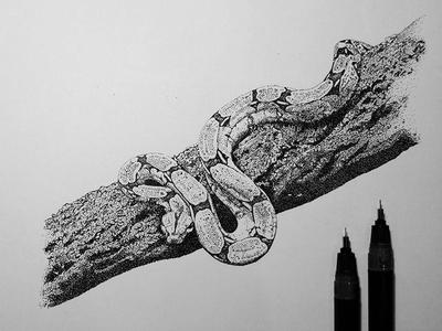 Snake on bark