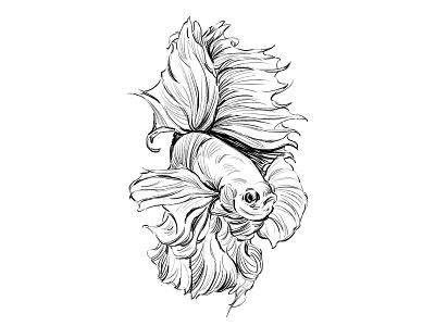 Fish illustration painting