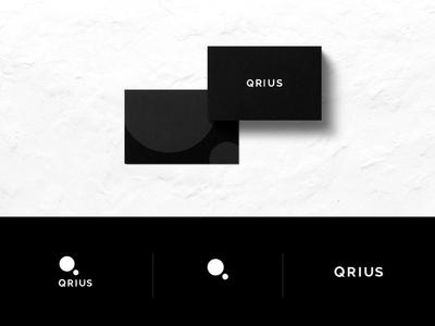 Qruis economist startup symbol india curious logo branding media digest news