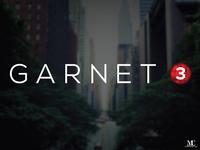 GARNET 3 Identity