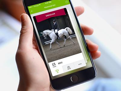 Equestrian Sport App card equestrian sport user experience user interface ios app