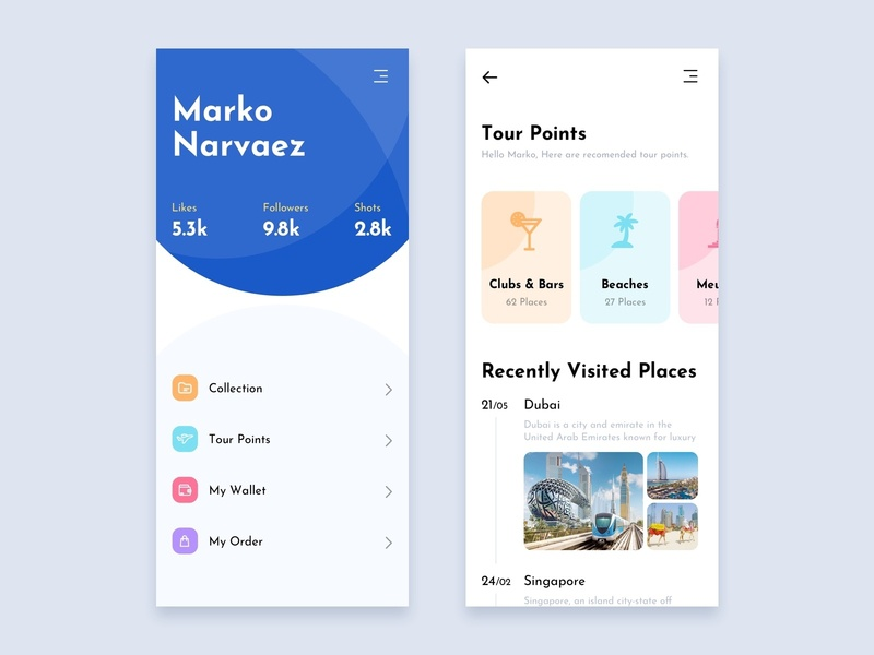 UI iphone clean web design mobile profile app visa wallet tour travel dubai flat ios interface ux ui