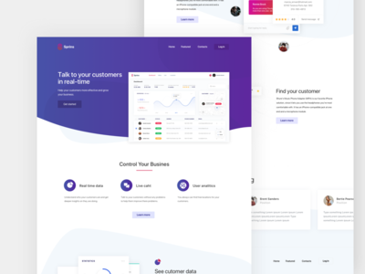 Sprins landing Page homepage home page website web site service product interface ux ui landing page
