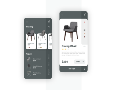 Furniture Store Mobile Application