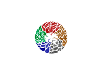 5 Elements + Brain