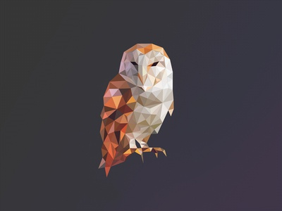 Poly Owl Logo poly owl logo bird triangles geometric 3d polygon mesh mark