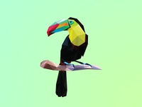 Poly Toucan