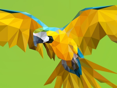 Poly yellow macaw yellow macaw polygon triangulation triangles geometry lowpoly bird wings brazil