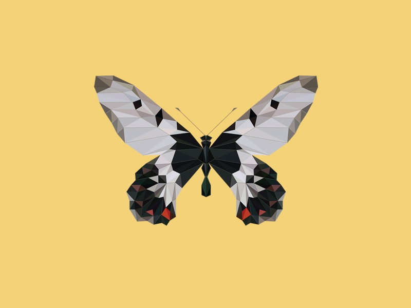 CRESSIDA CRESSIDA INSULARIS - Flies Files Project - #003 fliesfiles butterfly vector lowpoly triangles collection