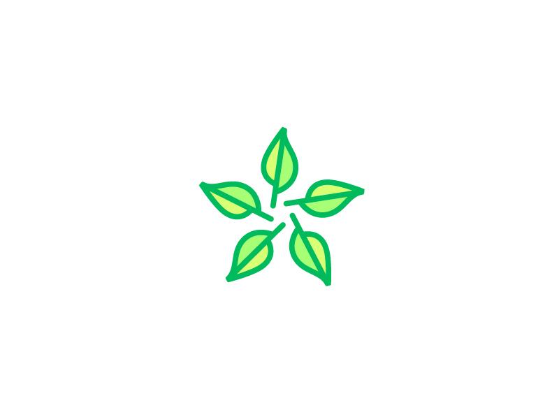 Green Star logo by Breno Bitencourt on Dribbble