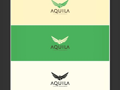Aquila Logo - Final eagle wings flight liaison management handshake featured logodesigner logodesign bauru visual identity breno bitencourt bitencourt breno logotype logotipo identity identidade visual identidade de marca design studio design brazil brasil branding brand identity brand