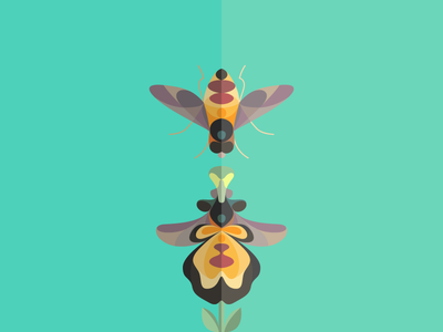 Spot your flower! deleuze symbiosis mirror mimic love connection bee flower wasp orchid