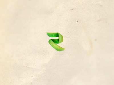 Rivière Logo r green folded fold logo bitencourt breno logotype logotipo identity identidade visual identidade de marca design studio design brazil brasil branding brand identity brand