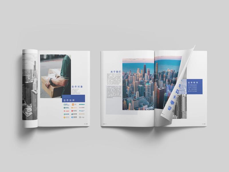 BigTree Finance Company Brochure