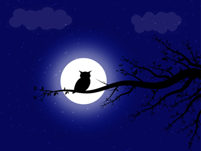 Owl owl design illustrator illustration
