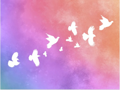 Flying Birds birds branding illustration