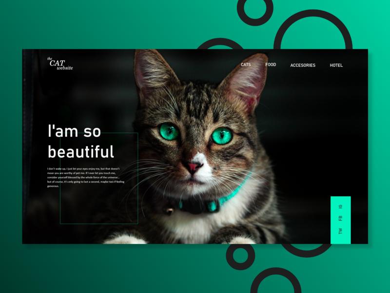 The Cat Website ui cat website web design