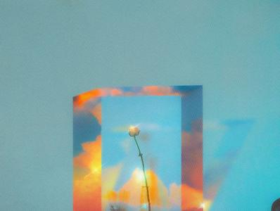 flower in clouds