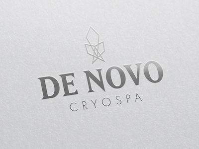 Cryotherapy Branding Project mockup graphic design typography illustrator branding logo cyrotherapy
