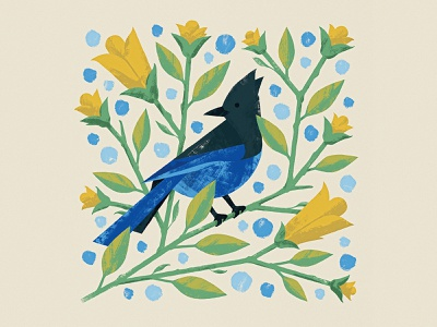 Steller's Jay wacom nature leaves vines flowers blue jay stellers jay bird photoshop design texture illustrator vector illustration