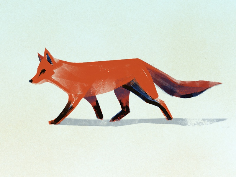 Fox Sketch wip sketch digital painting brush procreate winter red fox fox texture design illustrator illustration