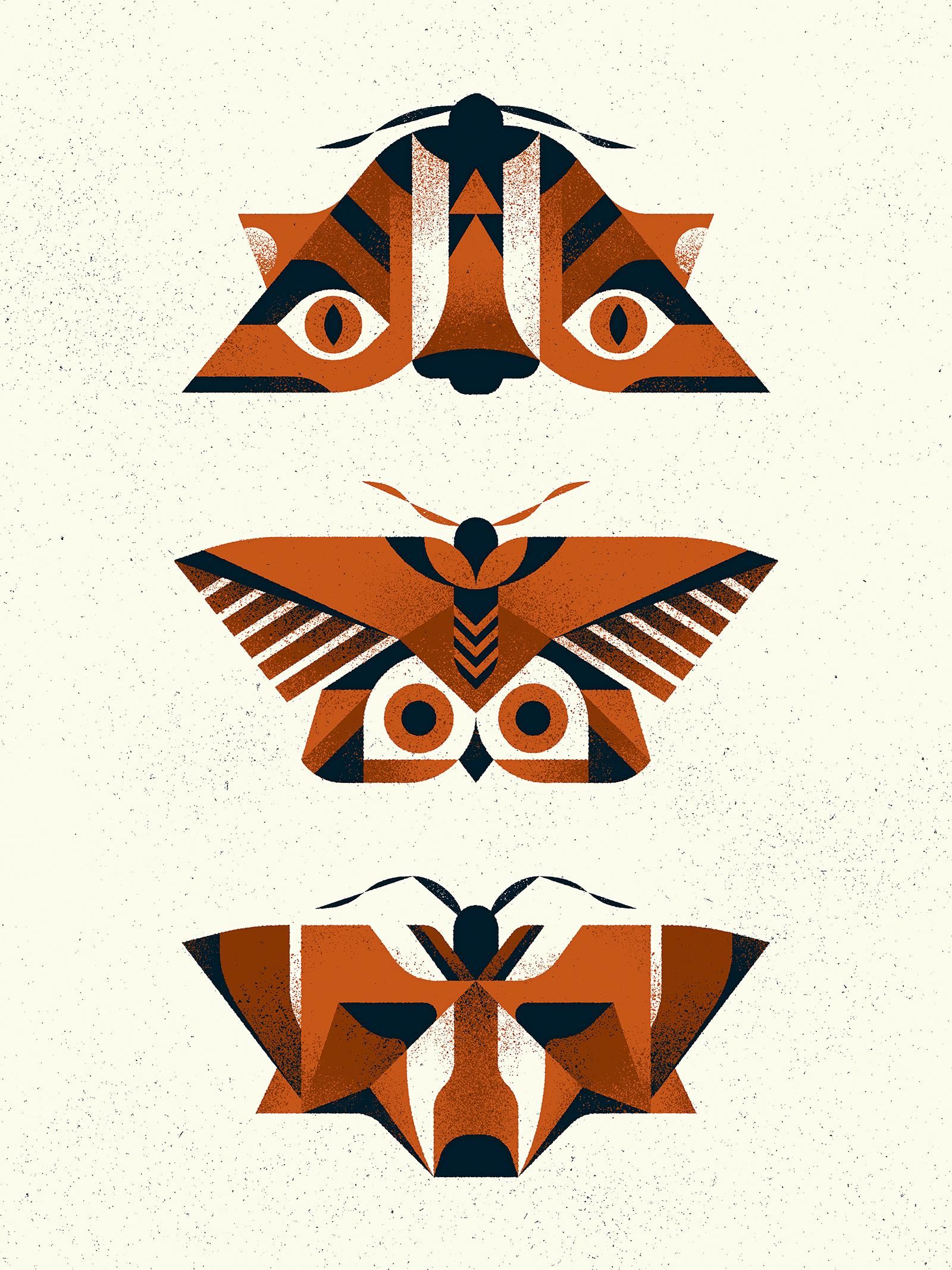 Moths dribbble