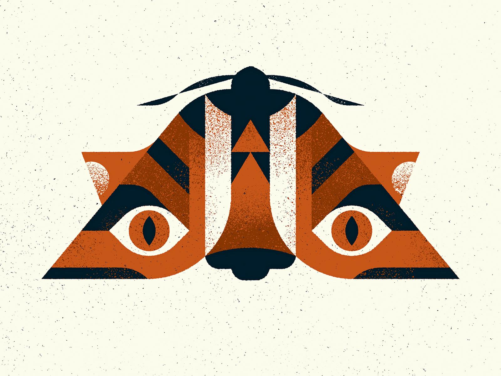 Moths tiger