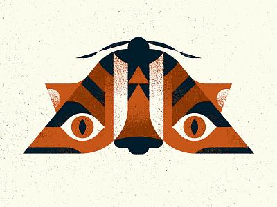 """Tiger"" Moth animal nature insect totem tiger moth specimen design texture photoshop illustrator vector illustration"