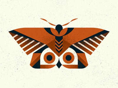"""""""Owl"""" Moth nature totem animal insect owl mimicry moth texture design photoshop illustrator vector illustration"""
