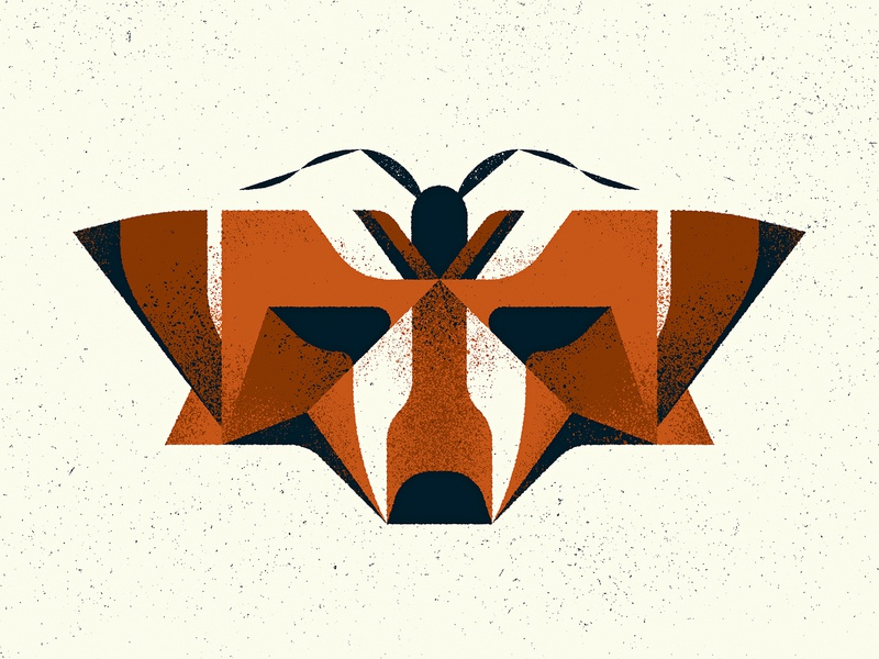 """Fox"" Moth totem animal insect specimen nature fox mimicry moth texture design photoshop illustrator vector illustration"