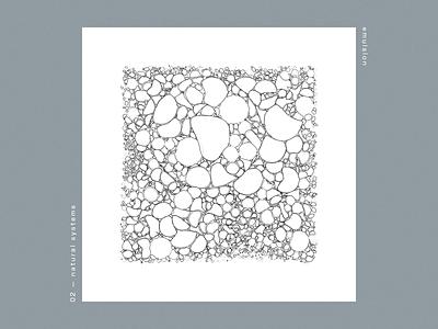 natural systems / emulsion procedural code design generative art generative 2d illustration